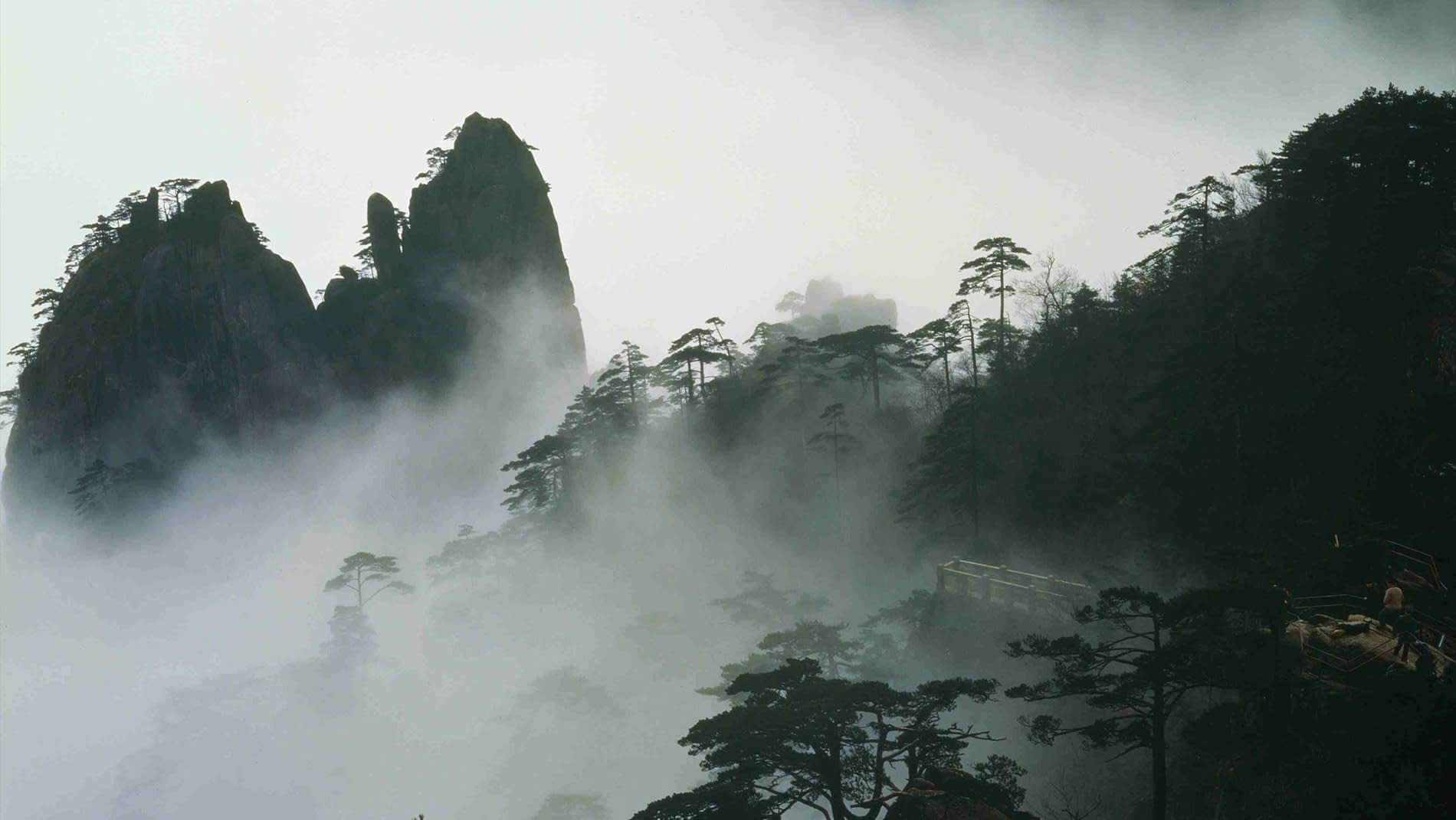 Yellow Mountains~These legendary mountains have been revered in China for centuries and have been the inspiration for countless poems, paintings, stories, songs and movies.